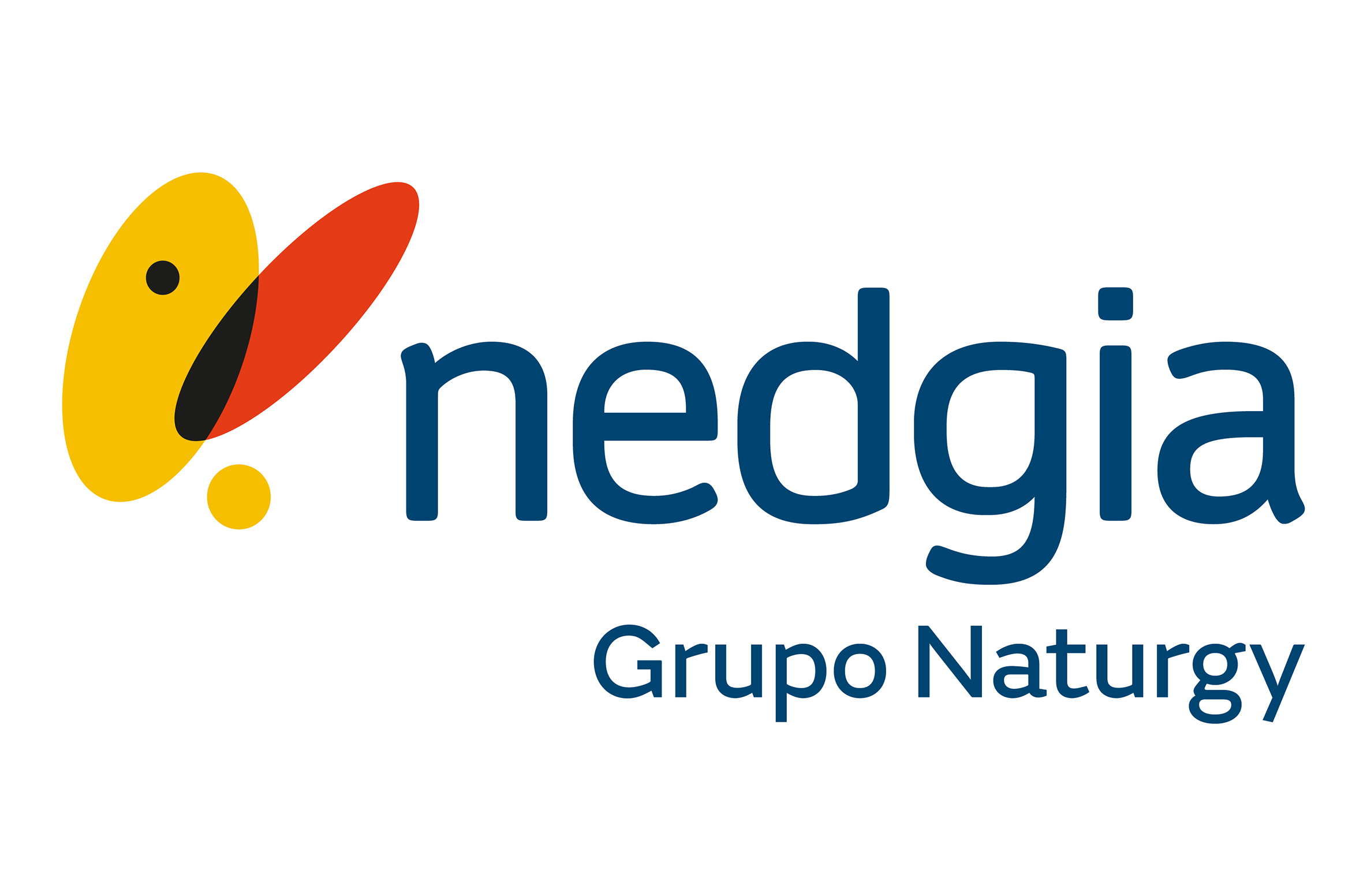 nedgia-small
